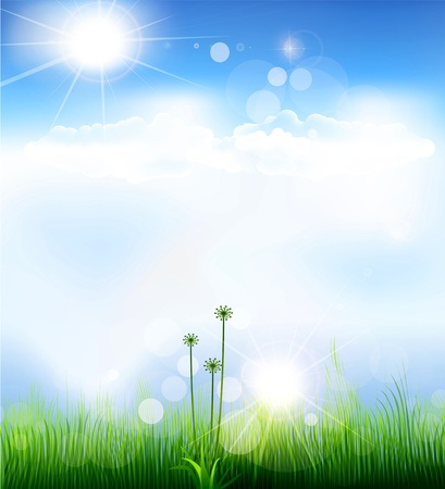 vector background with a blue sky, grass and sun Illustration
