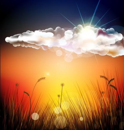 sunset Stock Vector - 16544158