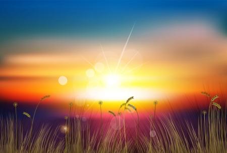 zachód słońca Ilustracje wektorowe