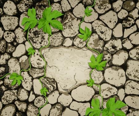 vecteur de fond avec des pierres et une plante rampante Vecteurs