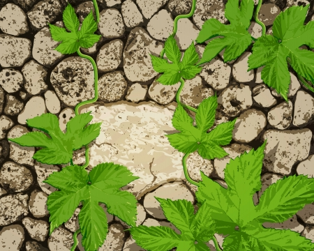 stonework: vector background with stonework and a creeping plant Illustration