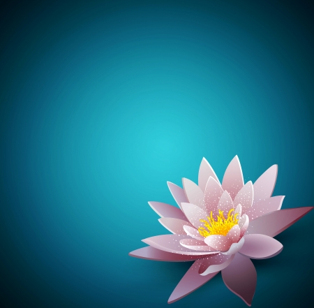 water lilly: vector background with a water lily