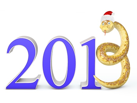 Snake instead of the number three in the hat of Santa Claus Stock Photo - 15842651