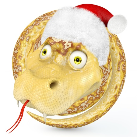 Snake coiled ring in the cap of Santa Claus Stock Photo - 15842654
