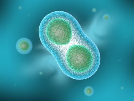 membrana cellulare: Due cellule si dividono per osmosi, in background altre cellule