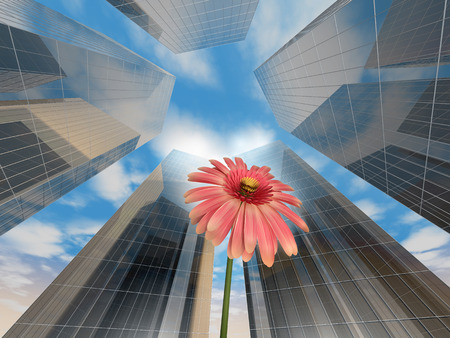 Skyscrapers seen from below with a flower in the middle Stock Photo