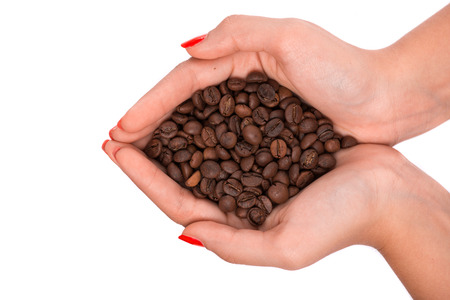 hardships: Woman hands together holding a pile of roasted coffee beans isolated on white background. Top view