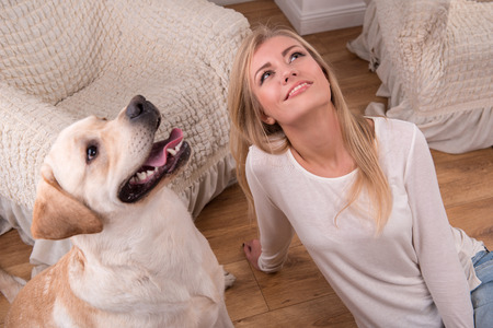 knitted jacket: Beautiful  slender blond girl in jeans and beige knitted jacket  sitting on floor  with Labrador Retriever smiling looking aside top view