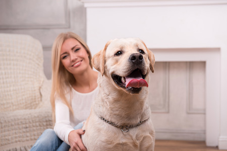 knitted jacket: Beautiful  slender blond girl in jeans and beige knitted jacket  sitting on floor  with Labrador Retriever smiling looking at camera waist up selective focus