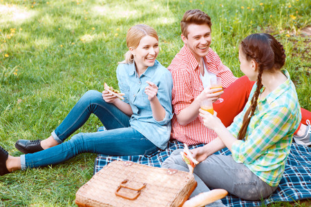 picnic park: With friends. Top view of smiling young people with soda and sandwiches during picnic in park.