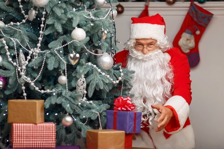 laugher: Want to make you happy. Pleasant Santa Claus holding present and hiding it under the Christmas tree while preparing for holiday
