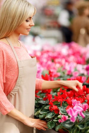 upbeat: Do with love. Pleasant positive upbeat florist standing near flowers and touching them while doing her job