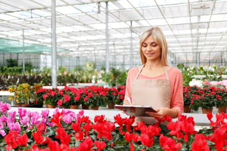 revision: Lets make a revision. Professional nice appealing florist holding folder and making notes while doing her job Stock Photo