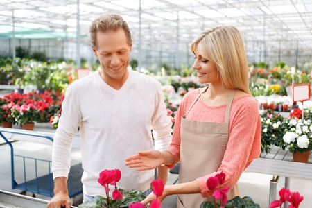 job market: Great choice. Agreeable delighted young florist showing flowers to the customer while selling them