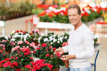 elated: Nature lover. Smiling handsome cheerful man touching flowers and choosing them while feeling elated Stock Photo