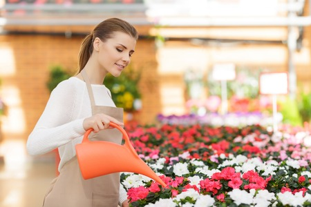 water garden: Nice positive flower seller holding  water can and watering flowers while being involved in work
