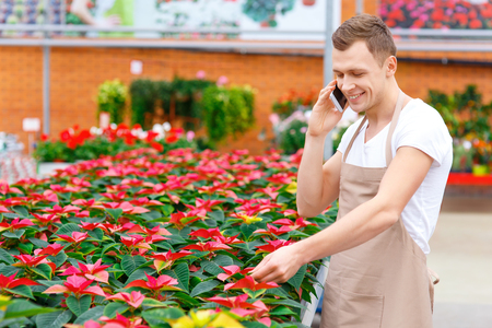 florae: Casual phone talk. Handsome florist is standing beside flowerpots and having a phone talk.