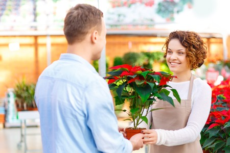 florae: Flower is chosen. Smiling female florist is giving particular flower to her client. Stock Photo