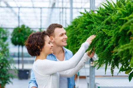 young  family: Flower shopping. Young lovely couple is busy choosing green flower for their apartment Stock Photo