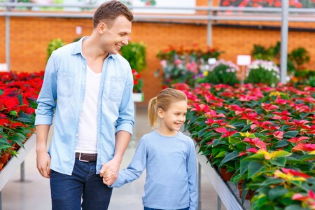 florae: Picking flowers. Handsome father with his small kid are walking down the orangery aisle. Stock Photo