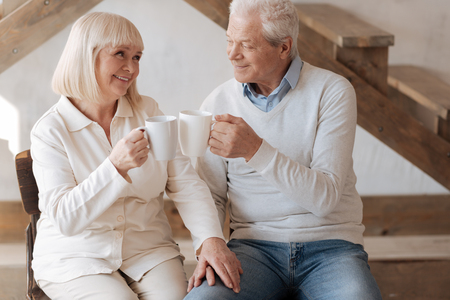 soulmate: Positive delighted couple clinking cups