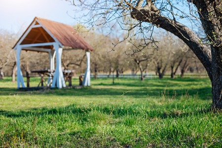 Countryside backyard with family gazebo in sunny day Stock Photo