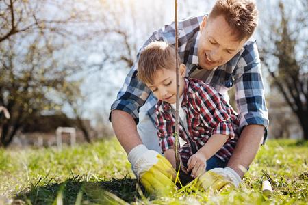 Male family members planting fruit tree Standard-Bild
