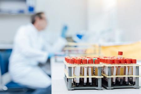 genomics: Many test-tubes standing on holder Stock Photo