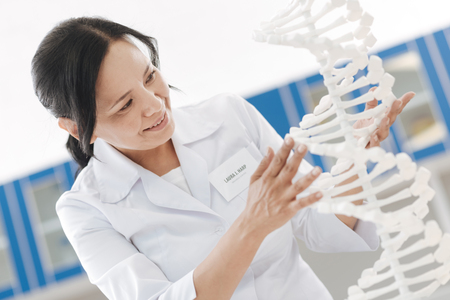 Cheerful intelligent scientist touching the DNA model Stock Photo