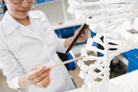 genomics: Professional female scientist holding a pencil Stock Photo