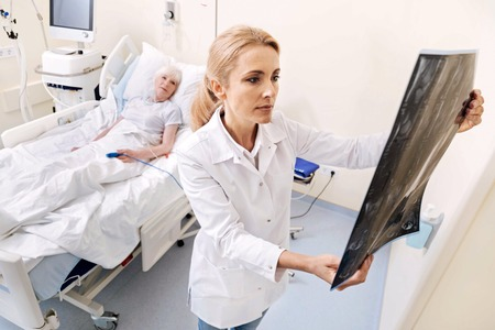 Devoted competent doctor examining the scan Stock Photo