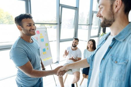 Delighted positive men shaking hands Stock Photo