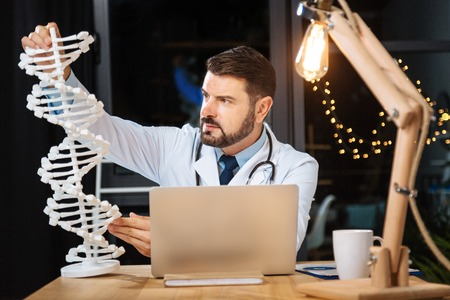 genomics: Smart professional researcher studying a DNA model Stock Photo