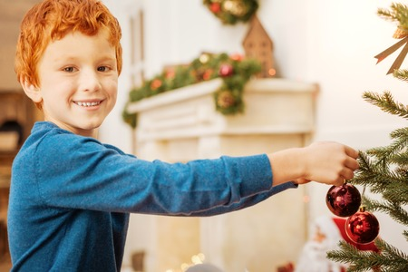 diligent: Diligent boy smiling while hanging christmas tree decorations