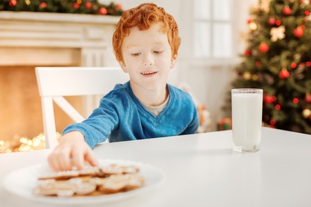Relaxed child eating gingerbread man on christmas morning Stock Photo