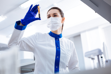 HIV test. Elegant professional female intern wearing mask while rising vial with blood and looking at it Stock Photo