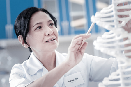 Attentive examination. Female scientist working in a laboratory and examining a plastic model of DNA while working on a new healthcare research. Stock Photo