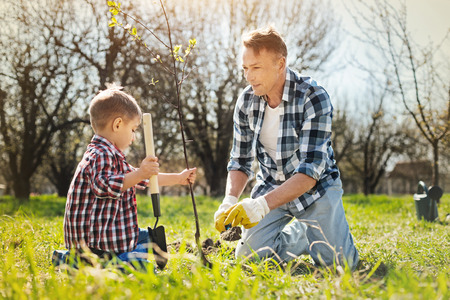 Outdoors activity. Caring adult father and his little son sitting on the grass and planting a tree while spending time in the garden