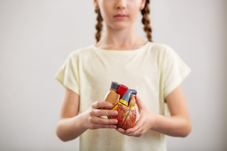 Visual representation. Selective focus of a human heart being shown o you by a nice pleasant girl Stock Photo