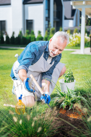 Joyful day. Bearded mature man wearing white gloves and apron holding little hoe in his hands while grubbing the weeds up Stockfoto