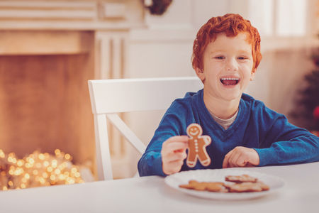 Sweet pleasure. Cute upbeat red-haired boy sitting at the table and laughing happily while showing a gingerbread man having taking it from the plate