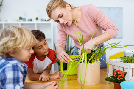 Looking at teacher. Two cute boys looking at teacher feeling attentive while cutting dry edges of plant