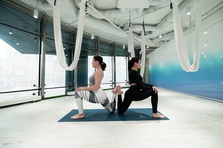 Women in leggings. Dark-haired women with ponytails in leggings doing yoga together in spacious room 写真素材