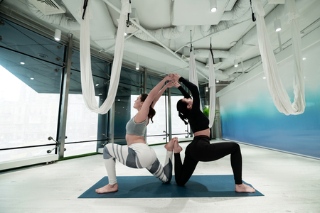 Sisters stretching. Dark-haired sisters wearing leggings stretching their backs while doing yoga together 版權商用圖片