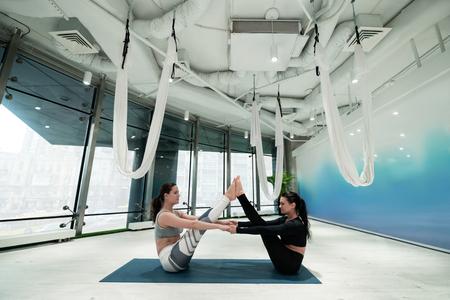 Doing plank exercises. Dark-haired slim and fit women sitting on sport mats doing plank exercises 版權商用圖片