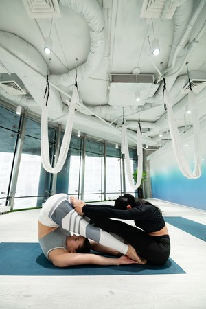 Sisters practicing. Two dark-haired sisters practicing fitness yoga together improving their stretching 写真素材