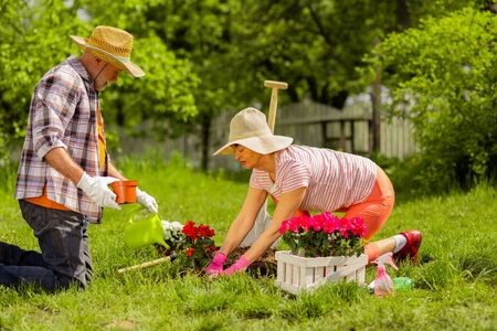 Wearing summer hats. Retired husband and wife wearing summer hats planting flowers near the house together