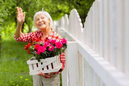 Waving to neighbor. Beaming beautiful elderly lady waving to her neighbor standing near fence Stock Photo