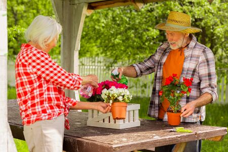 Watering flowers together. Couple of beaming cheerful pensioners feeling joyful while watering flowers together