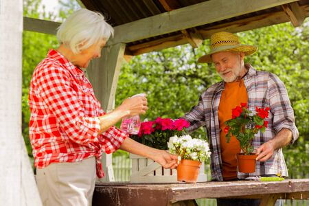 Feeling good. Aged good-looking husband and wife feeling good while watering flowers together